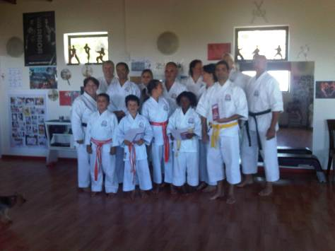 The Karateka's